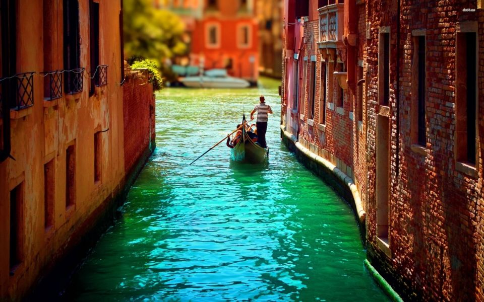 Venice in Motion